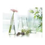 ilus-vaasi-pilt (500x500)